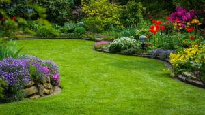 jardin à saint omer